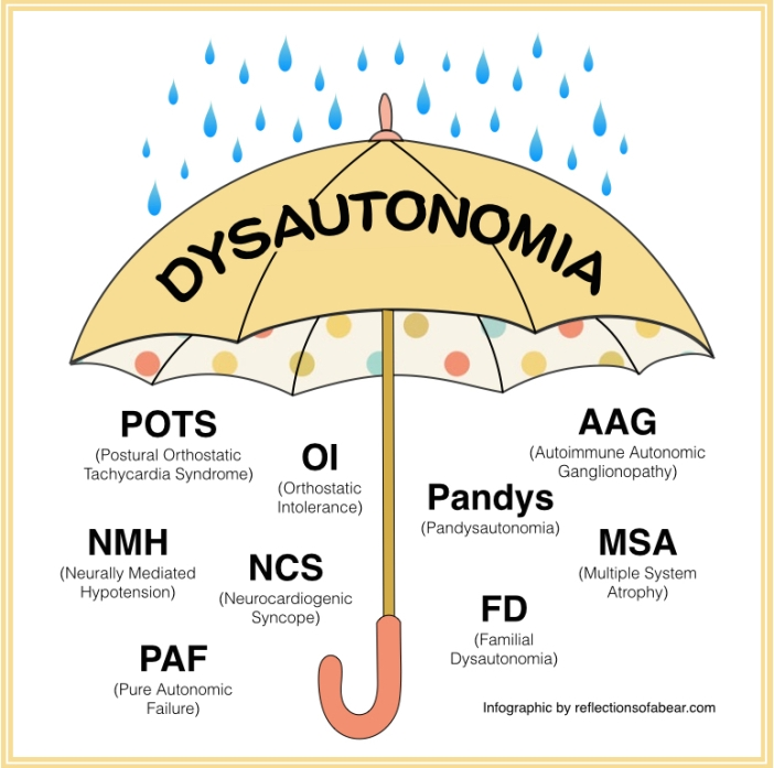 dysautonomia-umbrella